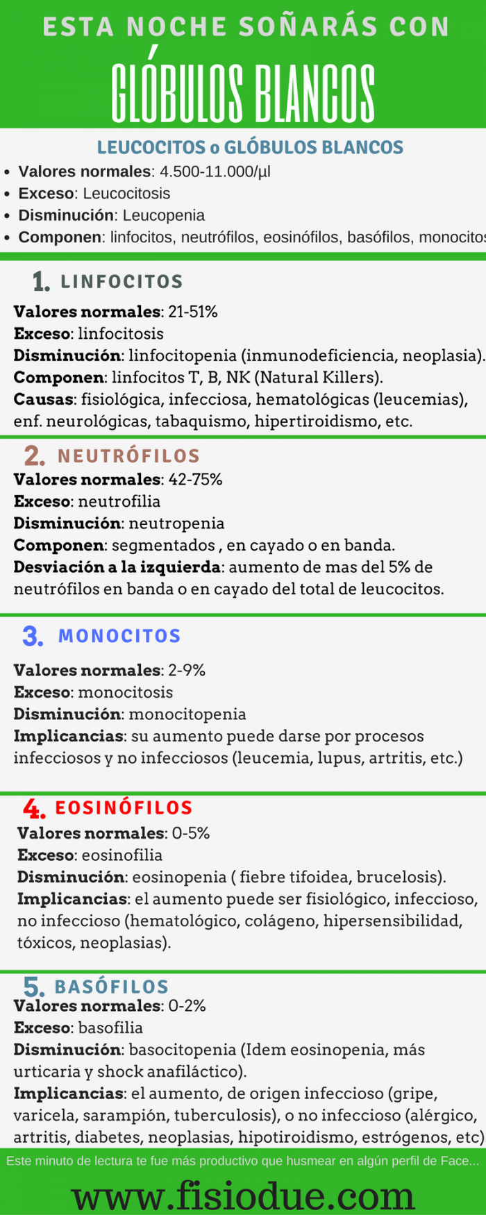Leucocitos o Serie Blanca. Alteraciones y Causas. | Fisiodue