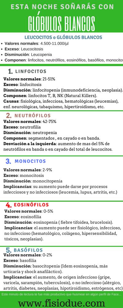 Infografía de leucocitos